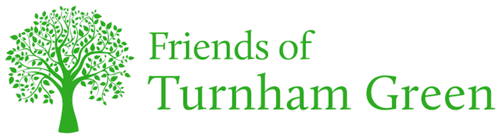 Friends of Turnham Green